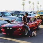Lewis posted a picture on Instagram when he was in Venice Beach last weekend of his gorgeous Shelby GT500. He posted this snap of two of his most prized possessions, his dog and his car saying 'beach last Sunday with my Coco, and my #shelbyGT500 #BEAST.'