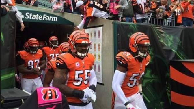 Repair My NFL Team: Cincinnati Bengals