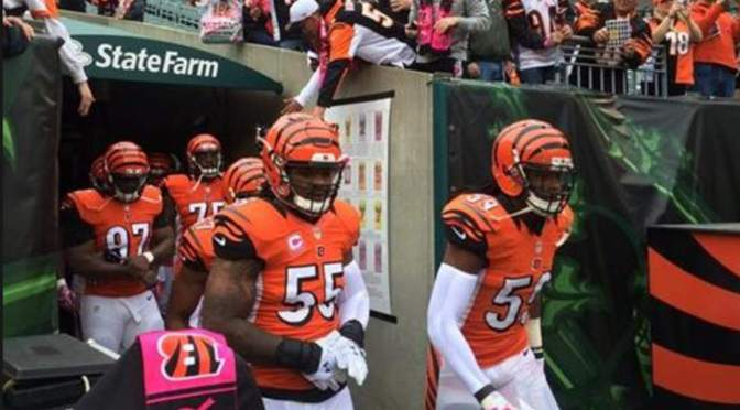 Repair My NFL Team: Cincinnati Bengals