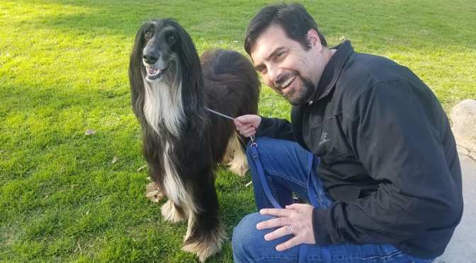 Say hello to my tall, well groomed friend … Rocket the Afghan … ChabDog of the Month for July 2019